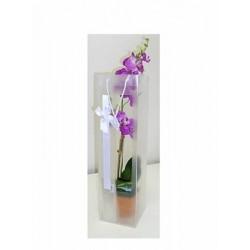 3034 Taška na orchidej