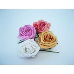 3109 Růže pěna