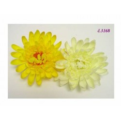 3168 Chryzantéma hlavička