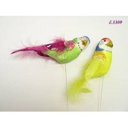 3309 Papoušek