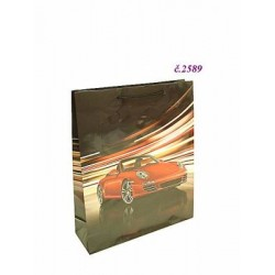 2589 Taška auto