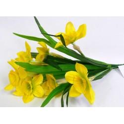 1222  Narcis 9 květů