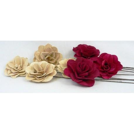 1764 Betal rose 6cm,bal.10 ks