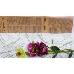 1879 Papír 50x75 bal./50 ks