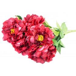 4491 Pivoňka kytice 7 květů