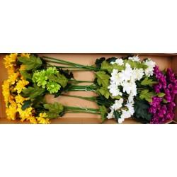4490 Astra 6 květů
