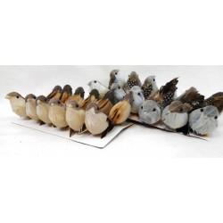 1186 Ptáček na drátku, box/12ks