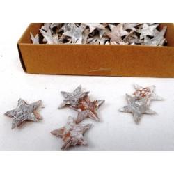 3986 Hvězda březová 2,5cm/300ks