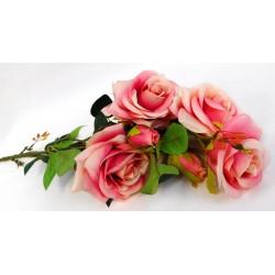 5277 Růže 5 květů