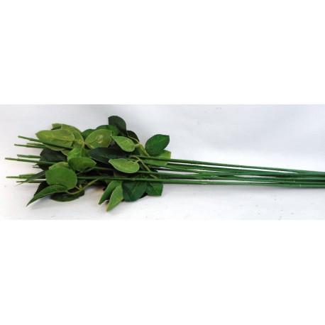 5597 Stonek růže,bal/12ks